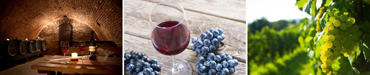 winetasting_transylvania_6days_tour_colaj