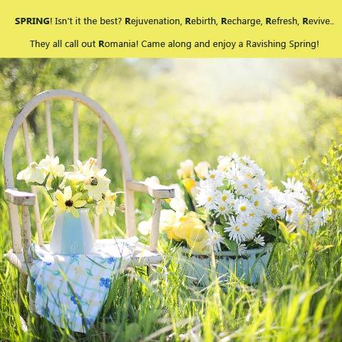spring 2-01
